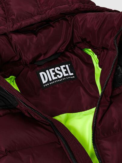 Diesel - W-RUSSELL, Violet - Vestes d'hiver - Image 3